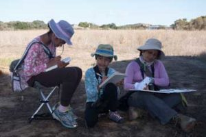 Nature Journal Club outing & Elkhorn Slough - Moss Landing, CA,