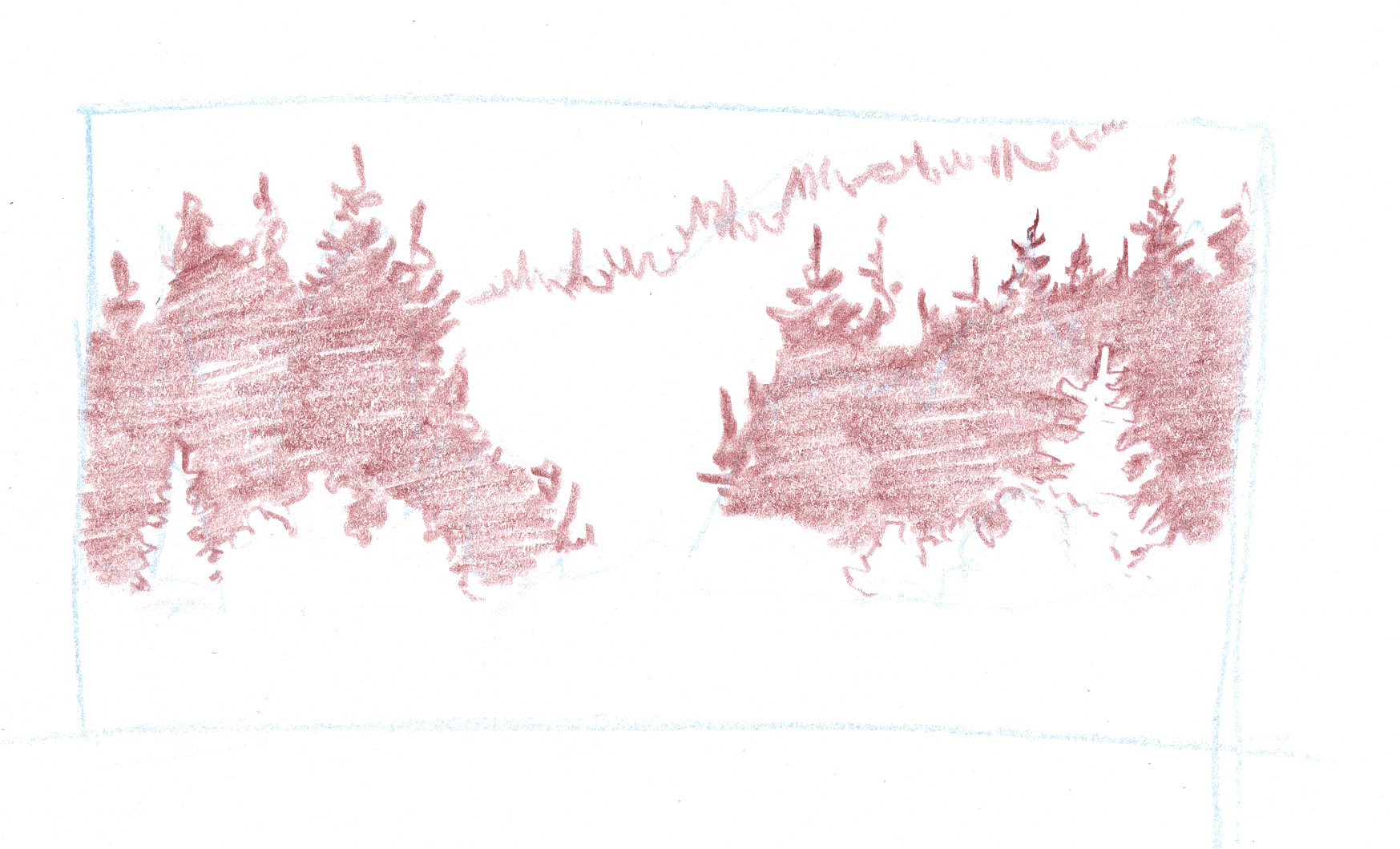How To Draw Coniferous Forests John Muir Laws