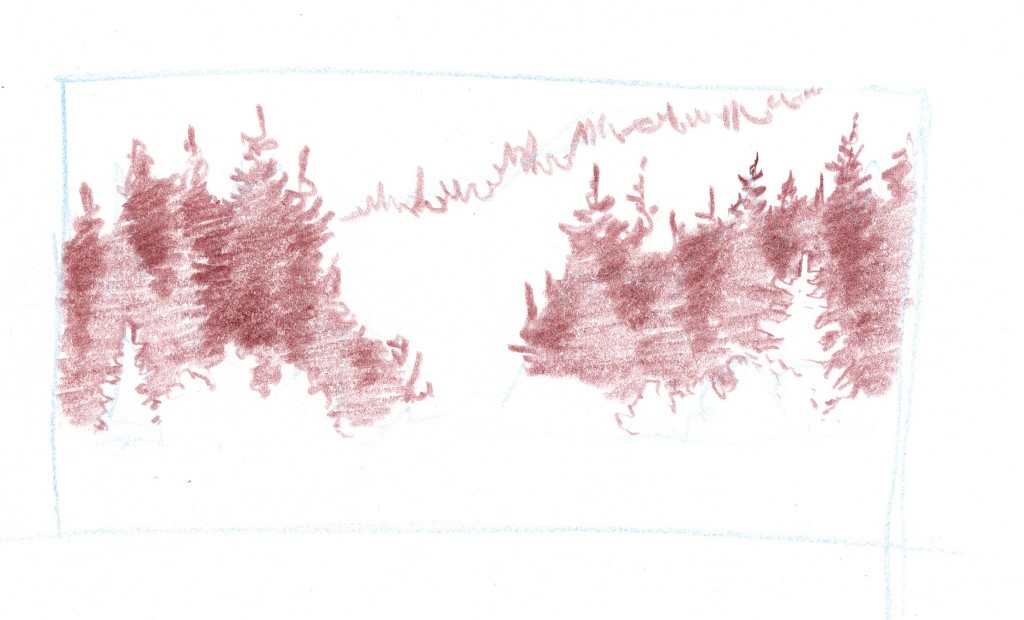 conifer forest thumb 5