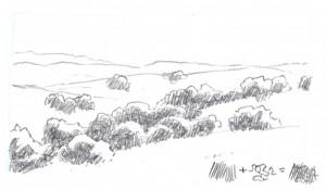 oaks 1c